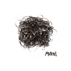 Muriel CD